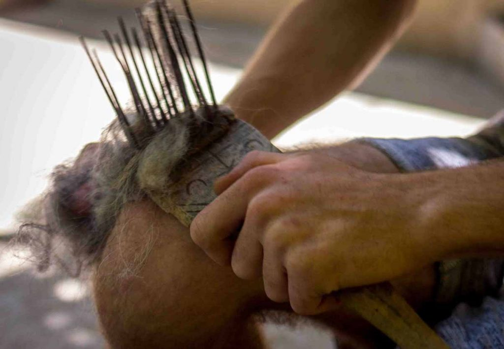 Combing Wool by Hand With Combs