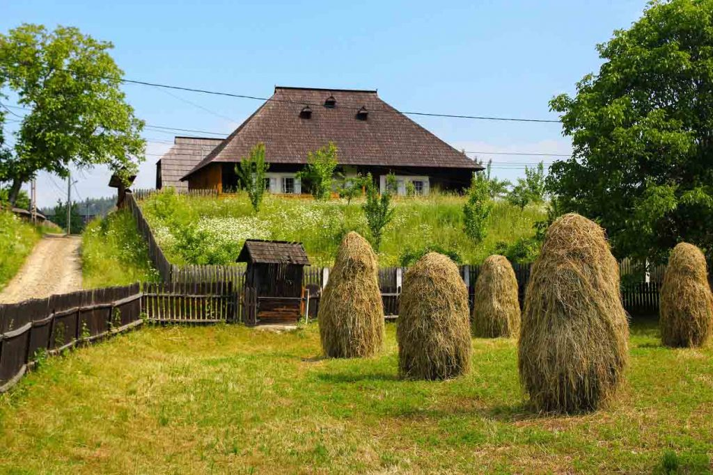 Traditional Agriculture in the Romanian Countryside